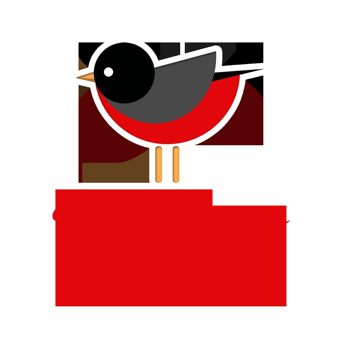 PETTIROSSO EDITORE